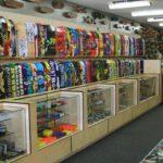 6 Tips For Buying a Beginner Skateboard
